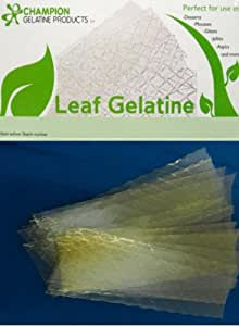 OliveNation Gelatine Silver Leaf by Champion - Substitutes for Powdered Gelatine - Size of 20 sheets