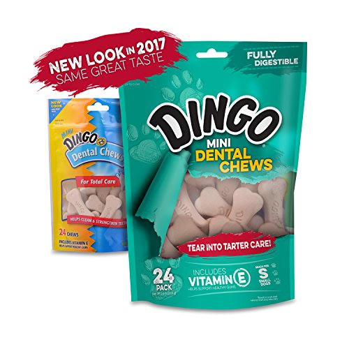 Dingo-Mini-Denta-Treats-24-Pack