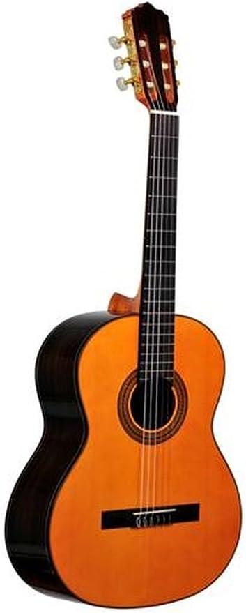 Ever Play cg90 C Segovia Guitarra de concierto: Amazon.es ...