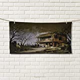 Chaneyhouse Rustic,Travel Towel,Old Haunted Abandoned Wood House at The Dark Night with Bats Scary Horror Paint,Quick-Dry Towels,Multicolor Size: W 14'' x L 27.5''