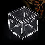Acrylic Transparent Pet Reptiles Box Breeding Tanks Container For Lizard Chameleon Spider Snake Other Reptiles 111111cm