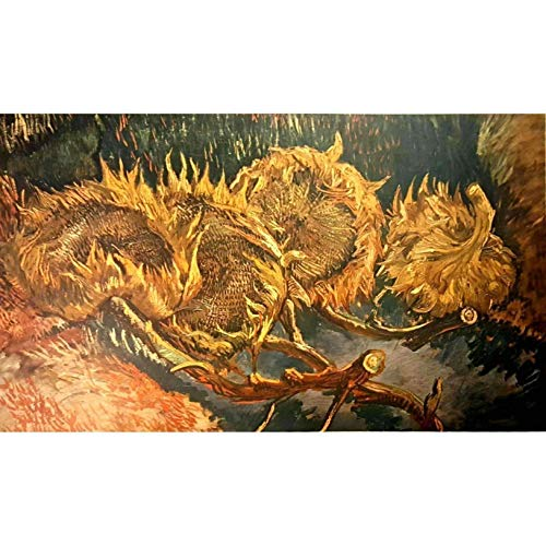 Vincent Van Gogh Four Withered Sunflowers 1887 Vintage Collotype Kroller Muller Stichting No 6