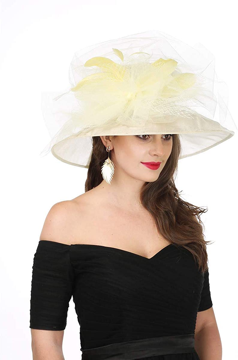SAFERIN Womens Organza Church Kentucky Derby Hat Feather Veil Fascinator Bridal Tea Party Wedding Hat
