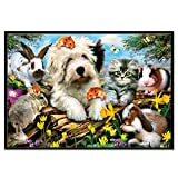 DIY 5D Diamond Painting Dartphew by Number Kits, Crystal Rhinestone Embroidery Pictures Arts Craft for Home Wall Decor - Lovely Dogs Cats Horses Animals - Reduces Eye Strain