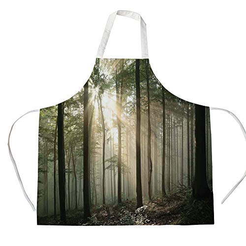 Farm House Decor 3D Printed Cotton Linen Apron,Sunrise in The Early Autumn Deciduous Forest Wild Woodland Seasonal Picture,for Cooking Baking Gardening,Green Grey Black from Evhspp Apron