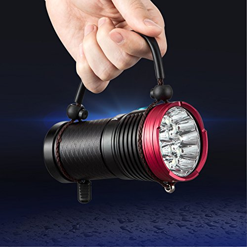 16 Led Torch Super Bright Light in US - 3