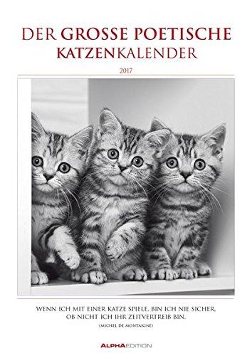 Der große poetische Katzenkalender 2017 - Literarischer Bildkalender A3 - mit Zitaten - schwarz/weiß - Tierkalender