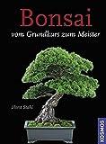 Bonsai: Vom Grundkurs zum Meister