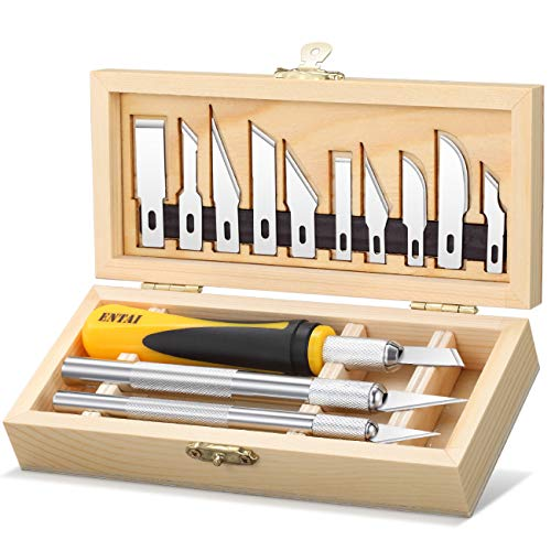 ENTAI 16 Piece Precision Hobby Knife Set, with Durable Wooden Box, Professional Razor Sharp Knives for Pumpkin Carving, Model Building, DIY Art Work Cutting, Hobby, Scrapbook and Sculpture