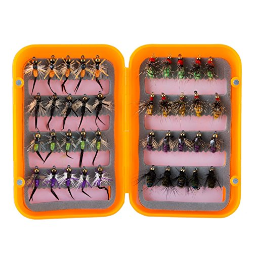 (Piscifun 40pcs Wet Flies Fly Fishing Lures Bass Salmon Trouts Sinking Flies Assortment with Fly Box Multicolor 10# Hook)