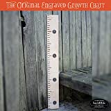 Back40Life 48'' Premium Engraved Wooden Growth Height Chart Ruler - The Typewriter (Golden Pecan + Black)