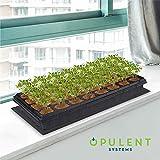 OPULENT SYSTEMS Durable Waterproof IP67 Seedling