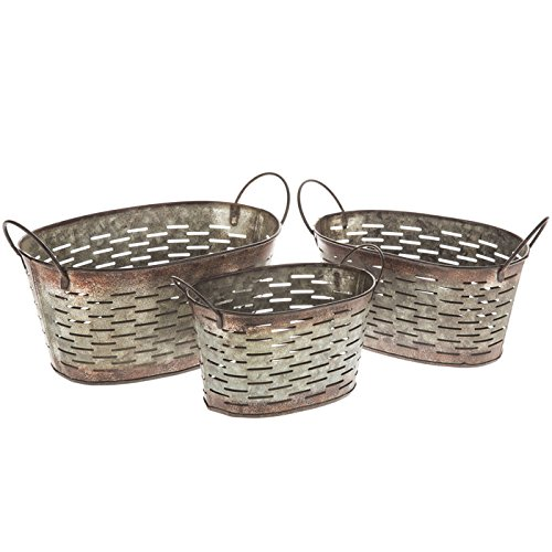 Galvanized Rustic Metal Small Oval Olive Buckets with Handles SET OF THREE FLORAL Flower Pot (Olive Basket)