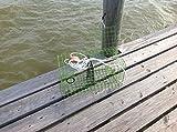 Rob Smith LIME GREEN Trap Maryland Blue crab pot trap Chesapeake Atlantic blue crab PVC coated metal Heavy Duty