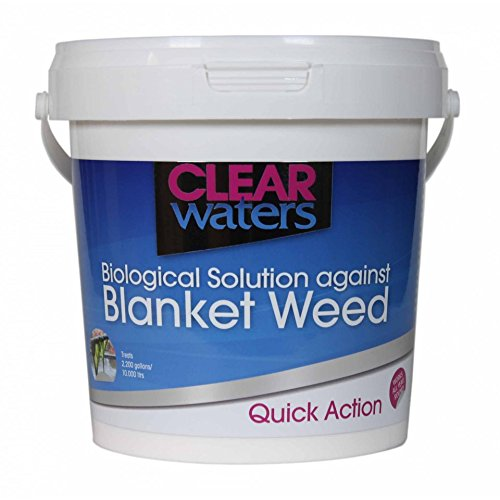 Clear-Waters-Solution-anti-algues-pour-bassin-1-l