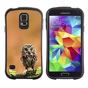 Stuss Case Hybrid PC + TPU Anti-Shock Case for Samsung Galaxy S5 - The Curious Cute Owl