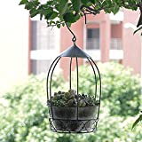Hanging Flower Plant Pot, Planter Holder Patio Home Decoration (Color : 1)