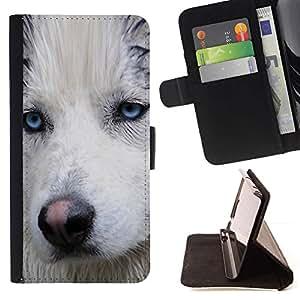 Momo Phone Case / Flip Funda de Cuero Case Cover - Light Blue Eyes Bozal fornido del perro mojado; - Huawei Ascend P8 Lite (Not for Normal P8)