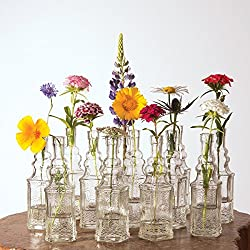 Luna Bazaar Small Vintage Glass Bottle Set (6.5-Inch, Ella Square Design, Clear, Set of 12) - Flower Bud Vases Bulk - For Party and Wedding Centerpieces