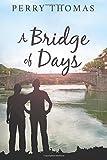 A Bridge of Days