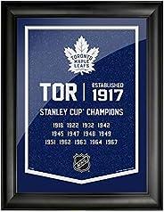 Toronto Maple Leafs 12x16 Team Empire Framed Artwork