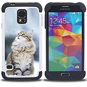 """SAMSUNG Galaxy S5 V / i9600 / SM-G900 - 3 en 1 impreso colorido de Altas Prestaciones PC Funda chaqueta Negro cubierta gel silicona suave (Gato Nevado"""")"""