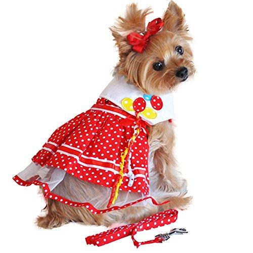 Red Polka Dot Balloon Designer Dog Dress with Matching Leash -