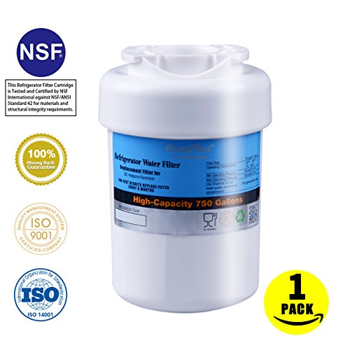 Pureplus Pp Rwf0600a Compatible With Ge Water Filter Mwf Gwf Gwfa Gwf01 Gwf06 Mwfa Hwf Kenmore 46 9991 469996 Water Filters