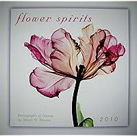 Flower Spirits: Radiographs of Nature