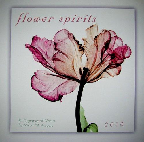 - Flower Spirits 2010 Wall Calendar (Calendar)