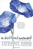 A Shattered Moment (A Fractured Lives novel)