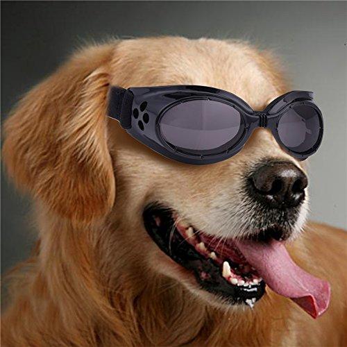 Sport Pet Dog Sunglasses Anti-UV400 Eye Protection Goggles Waterproof Windproof Anti-Fog Fashion Sunglasses for Small Pet Puppy Cat - Running Cats Eyes