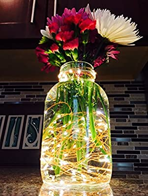 Custom String LED Lights for Party, Weddings or Decoration. Firefly Copper Wire Lights that are Water Proof, USB and A/C Powered. Warm White. 30 FT 100 LED, 100 FT 300 LED, 50 FT