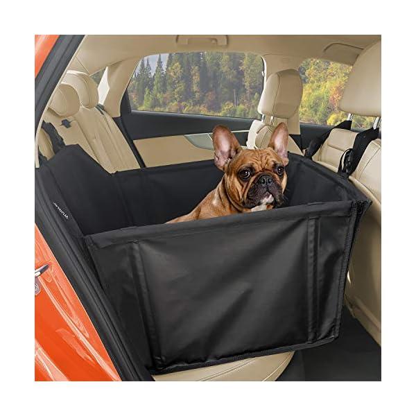 51eDWb8kWjL WUGLO Extra Stabiler Hunde Autositz - Verstärkter Autositz für kleine und mittlere Hunde mit 4 Befestigungsgurten…