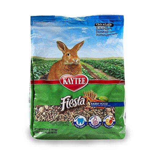 Kaytee Fiesta for Rabbits, 6.5 Pound