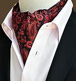Secdtie Mens Paisley Floral Ascot 100% Silk Jacquard Woven Party Cravat Ties