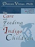 The Care and Feeding of Indigo Children