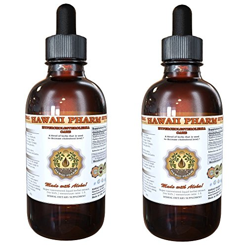 Hypercholesterolemia Care Liquid Extract Herbal Dietary Supplement 2x4 oz by HawaiiPharm