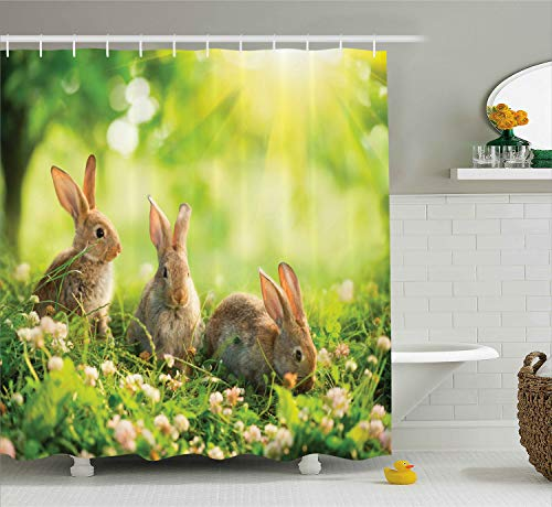 (Ambesonne Animal Decor Shower Curtain by, Funny Fluffy Rabbits Bunny Family on Daisies Grass Easter Meadow Fresh Image, Fabric Bathroom Decor Set with Hooks, 70 Inches, Green Tan)