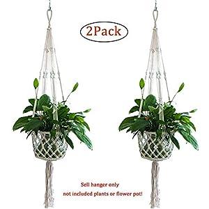 Plant Hanger 30