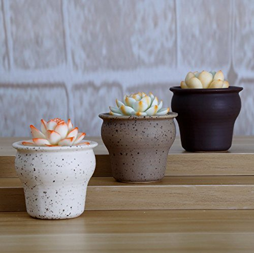 Little Rough Country Retro Simple Ceramic Succulent Planters Decorative Mini Rustic Herb Cactus Flower Plant Pot Home Desktop Decor (pack of 3) (Water Vat)