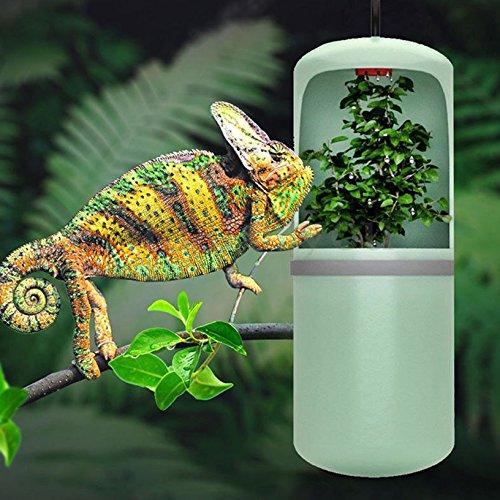 Toyofmine Gecko Lizard Chameleon Reptile Drinking Water Dripper Dispenser TerrariumHabitat (Reptile Dripper)