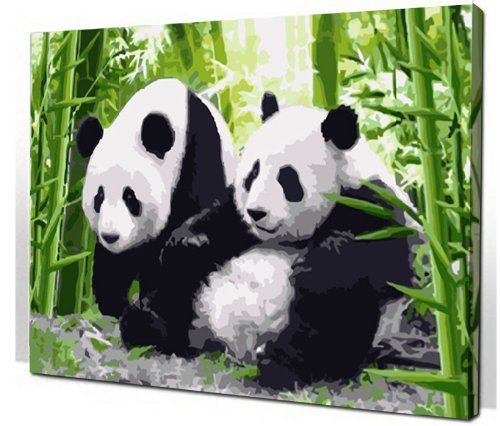 Diy oil painting, paint by number kit- Panda 1620 inch.
