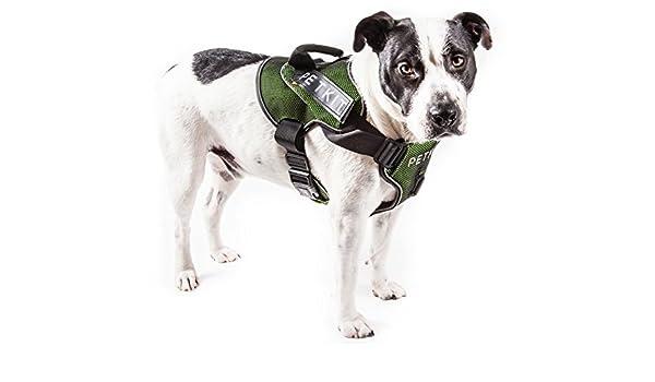 PETKIT Arnés de compresión Acolchado Ajustable para Perros con ...