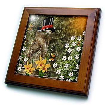 3dRose ft/_9082/_1 Mayor Olea Owl-Framed Tile 8 by 8-Inch