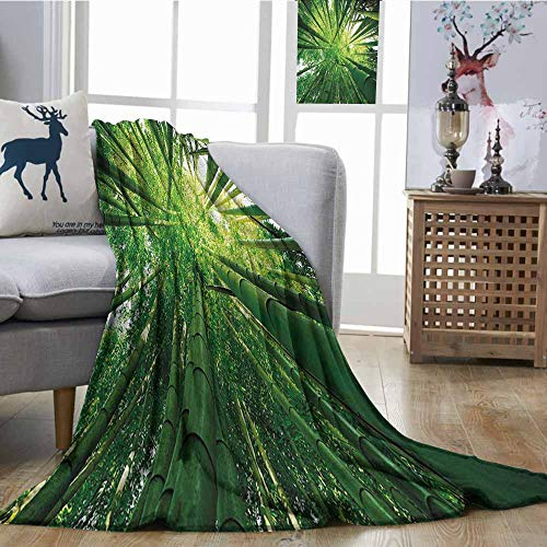 Zmcongz Blanket Sheets Nature Upward Bamboo Stems in Jungle Rainforest Exotic Lush Tree Woodland Shadows Picture Print Summer Quilt Comforter W54 xL84 Hunter Green