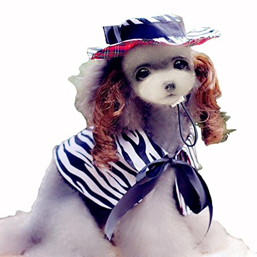 Bonawen Summer Dog Cape Pet Cload with Hat / Wig for Small,Medium,Large Pets
