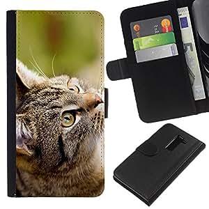 LECELL--Cuero de la tarjeta la carpeta del tirón Smartphone Slots Protección Holder For LG G2 D800 -- Gato Gris --