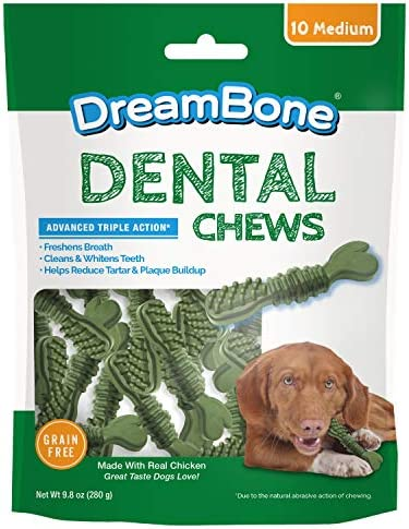 DreamBone Dental Chews Rawhide Free Toothbrush Treat for Dogs, for Fresh Breath and Clean Teath