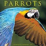 Parrots 2017 Wall Calendar